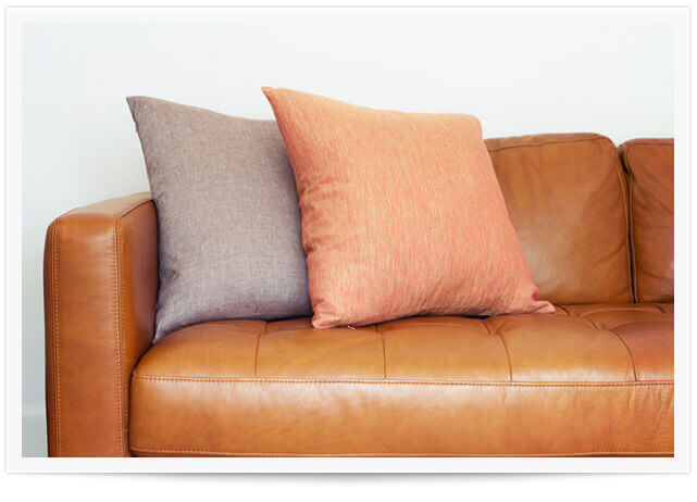 Upholstery Cleaning Service in Sonoma County