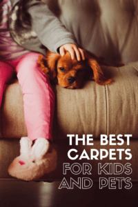 the best carpets for kids and pets